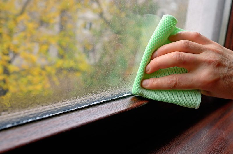 Does an Air Conditioner Kill Mold?