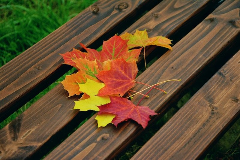 Fall Maintenance on Your HVAC System