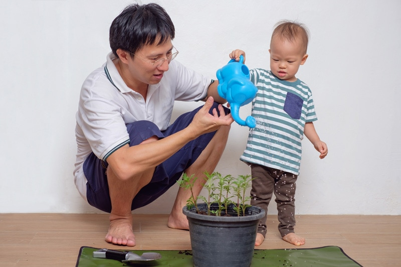 father and son watering plants showing the hvac ways to go green in your home.