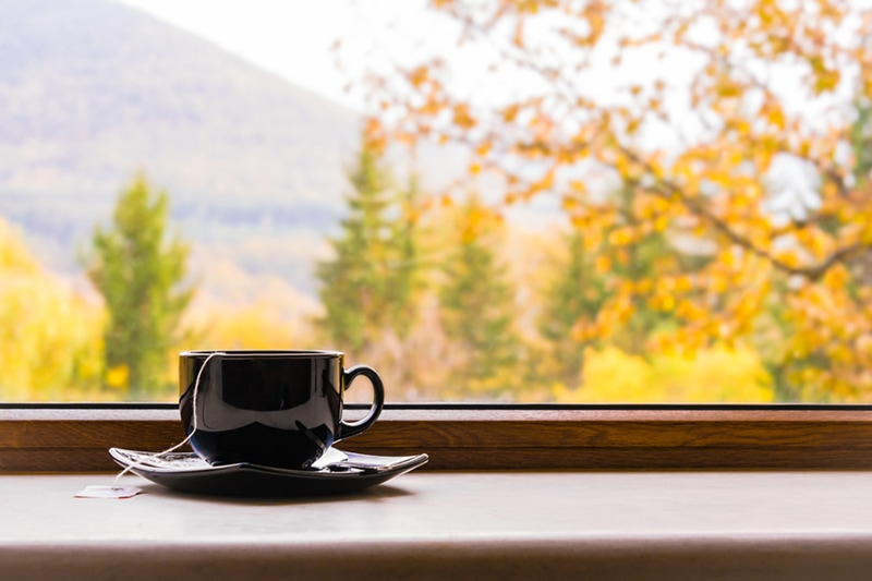 A cup of tea in front of a window with autumn view showing why you need a humidifier in your home in the fall.